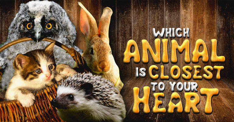 Which Animal Is Closest To Your Heart?